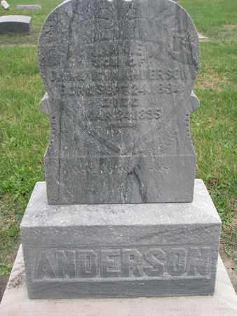 ANDERSON, FRANKIE - Union County, South Dakota | FRANKIE ANDERSON - South Dakota Gravestone Photos