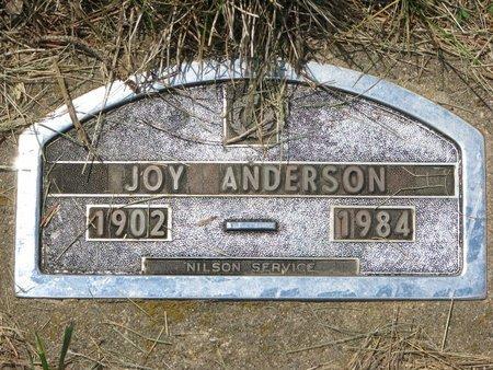 ANDERSON, JOY - Union County, South Dakota | JOY ANDERSON - South Dakota Gravestone Photos