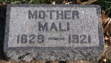 ANDERSON, MALI - Union County, South Dakota   MALI ANDERSON - South Dakota Gravestone Photos