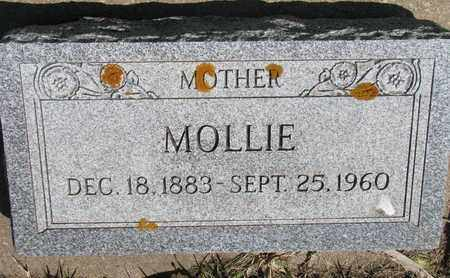 ANDERSON, MOLLIE - Union County, South Dakota | MOLLIE ANDERSON - South Dakota Gravestone Photos