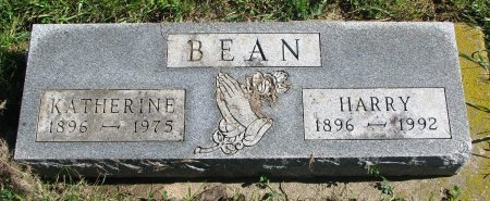 BEAN, HARRY - Union County, South Dakota | HARRY BEAN - South Dakota Gravestone Photos