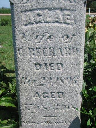 BECHARD, AGLAE (CLOSEUP) - Union County, South Dakota | AGLAE (CLOSEUP) BECHARD - South Dakota Gravestone Photos