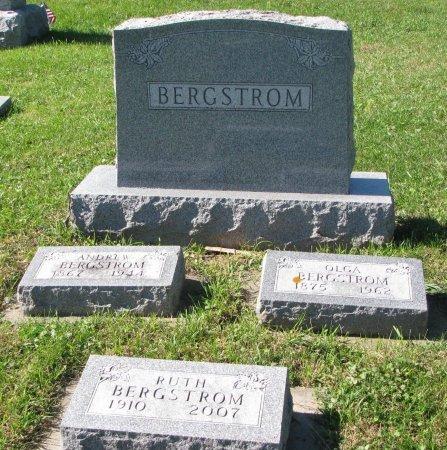 BERGSTROM, *FAMILY PLOT - Union County, South Dakota   *FAMILY PLOT BERGSTROM - South Dakota Gravestone Photos