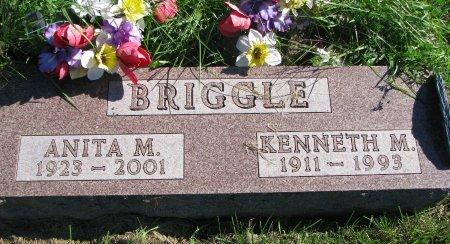 BRIGGLE, ANITA M. - Union County, South Dakota   ANITA M. BRIGGLE - South Dakota Gravestone Photos