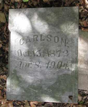 CARLSON, CARL W. - Union County, South Dakota | CARL W. CARLSON - South Dakota Gravestone Photos