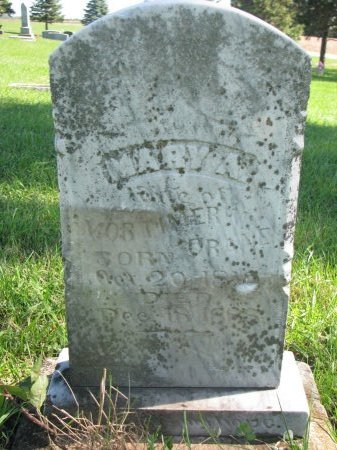 ARMES CRANE, MARY A. - Union County, South Dakota   MARY A. ARMES CRANE - South Dakota Gravestone Photos