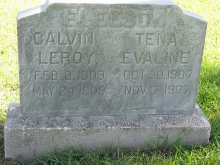 ELEESON, TENA EVALINE - Union County, South Dakota | TENA EVALINE ELEESON - South Dakota Gravestone Photos