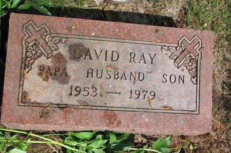 ERICSON, DAVID RAY - Union County, South Dakota | DAVID RAY ERICSON - South Dakota Gravestone Photos