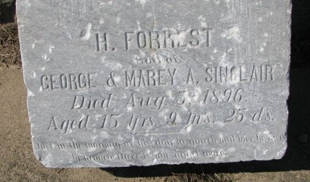 FORREST, H. FORREST (CLOSE UP) - Union County, South Dakota   H. FORREST (CLOSE UP) FORREST - South Dakota Gravestone Photos