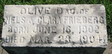 FRIEBERG, OLIVE (CLOSE UP) - Union County, South Dakota | OLIVE (CLOSE UP) FRIEBERG - South Dakota Gravestone Photos
