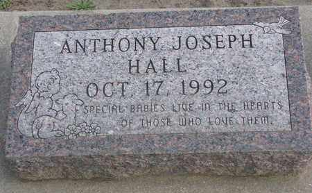 HALL, ANTHONY JOSEPH - Union County, South Dakota | ANTHONY JOSEPH HALL - South Dakota Gravestone Photos