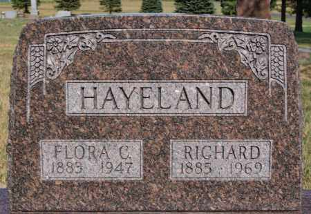HAYELAND, RICHARD - Union County, South Dakota | RICHARD HAYELAND - South Dakota Gravestone Photos