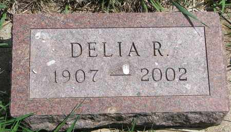 JAMTGAARD, DELIA ROSINA - Union County, South Dakota | DELIA ROSINA JAMTGAARD - South Dakota Gravestone Photos