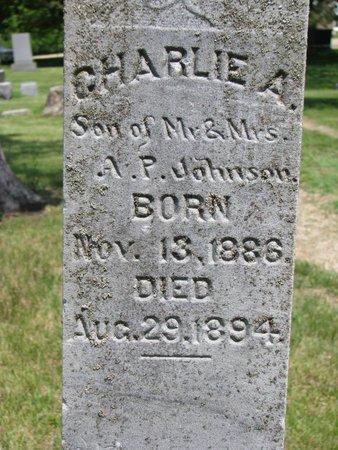 JOHNSON, CHARLIE A. (CLOSEUP) - Union County, South Dakota | CHARLIE A. (CLOSEUP) JOHNSON - South Dakota Gravestone Photos