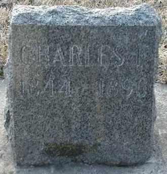 JOHNSON, CHARLES F. - Union County, South Dakota | CHARLES F. JOHNSON - South Dakota Gravestone Photos