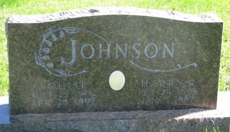 JOHNSON, LOUISE - Union County, South Dakota | LOUISE JOHNSON - South Dakota Gravestone Photos