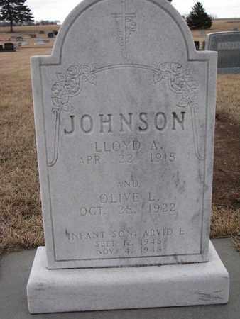 DOTY JOHNSON, OLIVE L. - Union County, South Dakota | OLIVE L. DOTY JOHNSON - South Dakota Gravestone Photos