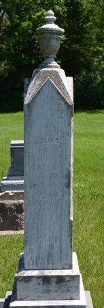 JOHNSON, NELS T. - Union County, South Dakota   NELS T. JOHNSON - South Dakota Gravestone Photos