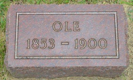JOHNSON, OLE T. - Union County, South Dakota | OLE T. JOHNSON - South Dakota Gravestone Photos