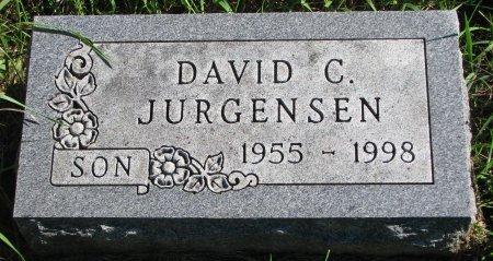 JURGENSEN, DAVID C. - Union County, South Dakota | DAVID C. JURGENSEN - South Dakota Gravestone Photos