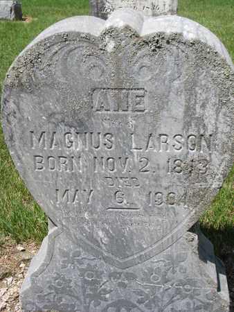 LARSON, ANE SOFIE - Union County, South Dakota | ANE SOFIE LARSON - South Dakota Gravestone Photos