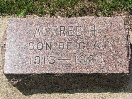 LARSON, ALFRED H. - Union County, South Dakota | ALFRED H. LARSON - South Dakota Gravestone Photos