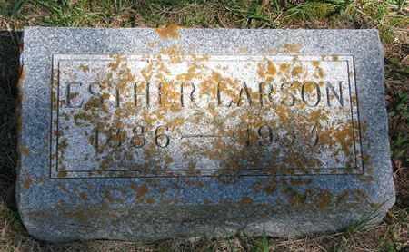 LARSON, ESTHER - Union County, South Dakota | ESTHER LARSON - South Dakota Gravestone Photos
