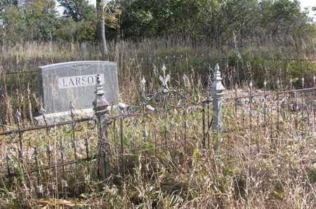 LARSON, *FAMILY PLOT - Union County, South Dakota   *FAMILY PLOT LARSON - South Dakota Gravestone Photos