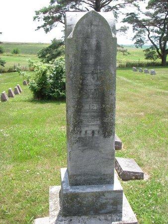 LARSON, GUSTAVA - Union County, South Dakota   GUSTAVA LARSON - South Dakota Gravestone Photos