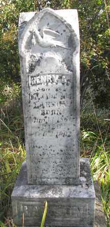 LARSON, HENRY A. - Union County, South Dakota | HENRY A. LARSON - South Dakota Gravestone Photos
