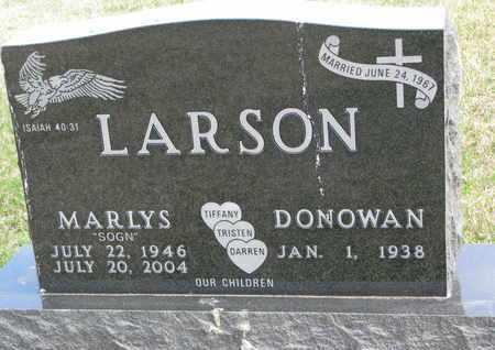 LARSON, DONOWAN - Union County, South Dakota | DONOWAN LARSON - South Dakota Gravestone Photos