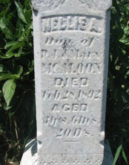 MCALOON, NELLIE A. (CLOSEUP) - Union County, South Dakota | NELLIE A. (CLOSEUP) MCALOON - South Dakota Gravestone Photos