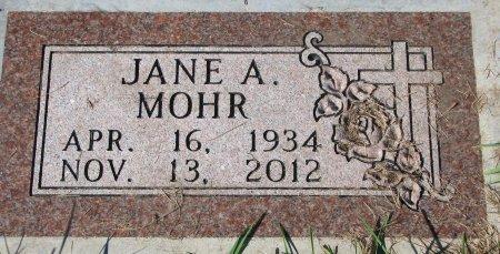MOHR, JANE (FOOT STONE) - Union County, South Dakota | JANE (FOOT STONE) MOHR - South Dakota Gravestone Photos