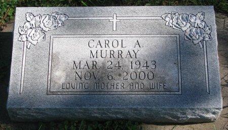 BERGSMA MURRAY, CAROL ANN - Union County, South Dakota | CAROL ANN BERGSMA MURRAY - South Dakota Gravestone Photos