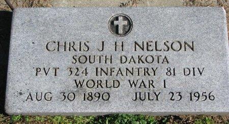 NELSON, CHRIS J.H. (WORLD WAR I) - Union County, South Dakota | CHRIS J.H. (WORLD WAR I) NELSON - South Dakota Gravestone Photos