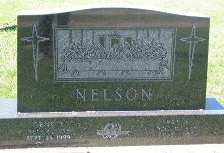 NELSON, GENE L. - Union County, South Dakota | GENE L. NELSON - South Dakota Gravestone Photos