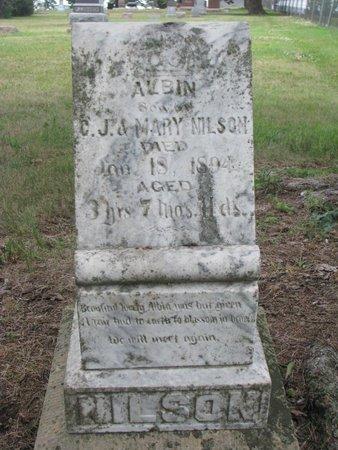NILSON, ALBIN - Union County, South Dakota | ALBIN NILSON - South Dakota Gravestone Photos