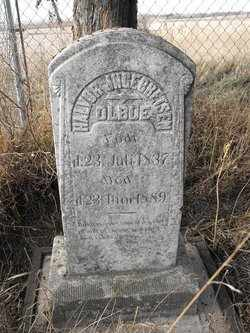 OLBUE, HALVOR - Union County, South Dakota | HALVOR OLBUE - South Dakota Gravestone Photos