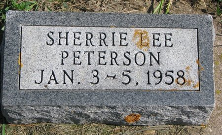 PETERSON, SHERRIE LEE - Union County, South Dakota | SHERRIE LEE PETERSON - South Dakota Gravestone Photos