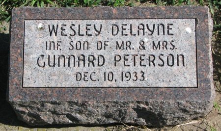 PETERSON, WESLEY DELAYNE - Union County, South Dakota | WESLEY DELAYNE PETERSON - South Dakota Gravestone Photos