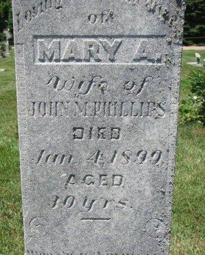 PHILLIPS, MARY A. (CLOSEUP) - Union County, South Dakota | MARY A. (CLOSEUP) PHILLIPS - South Dakota Gravestone Photos
