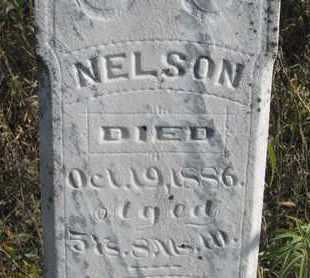 ROCHESTER, NELSON (CLOSEUP) - Union County, South Dakota | NELSON (CLOSEUP) ROCHESTER - South Dakota Gravestone Photos