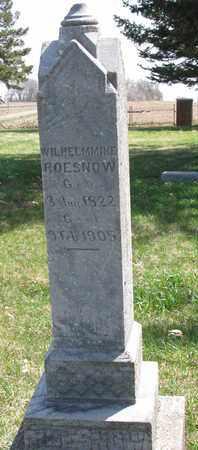 ROESNOW, WILHELMINE - Union County, South Dakota | WILHELMINE ROESNOW - South Dakota Gravestone Photos