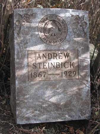 STEINBICK, ANDREW (CLOSEUP) - Union County, South Dakota   ANDREW (CLOSEUP) STEINBICK - South Dakota Gravestone Photos