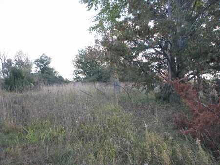 *STONES IN WEEDS, . - Union County, South Dakota | . *STONES IN WEEDS - South Dakota Gravestone Photos