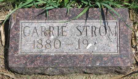 BLOSMO STROM, CARRIE M. - Union County, South Dakota | CARRIE M. BLOSMO STROM - South Dakota Gravestone Photos