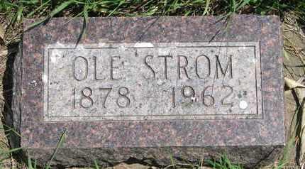 STROM, OLE - Union County, South Dakota | OLE STROM - South Dakota Gravestone Photos