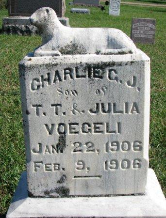 VOEGELI, CHARLIE C.J. - Union County, South Dakota | CHARLIE C.J. VOEGELI - South Dakota Gravestone Photos