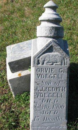 VOEGELI, ORVIE G. - Union County, South Dakota | ORVIE G. VOEGELI - South Dakota Gravestone Photos