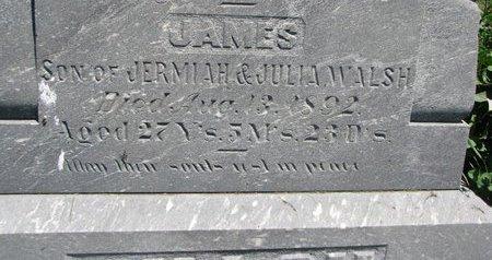 WALSH, JAMES (CLOSEUP) - Union County, South Dakota   JAMES (CLOSEUP) WALSH - South Dakota Gravestone Photos